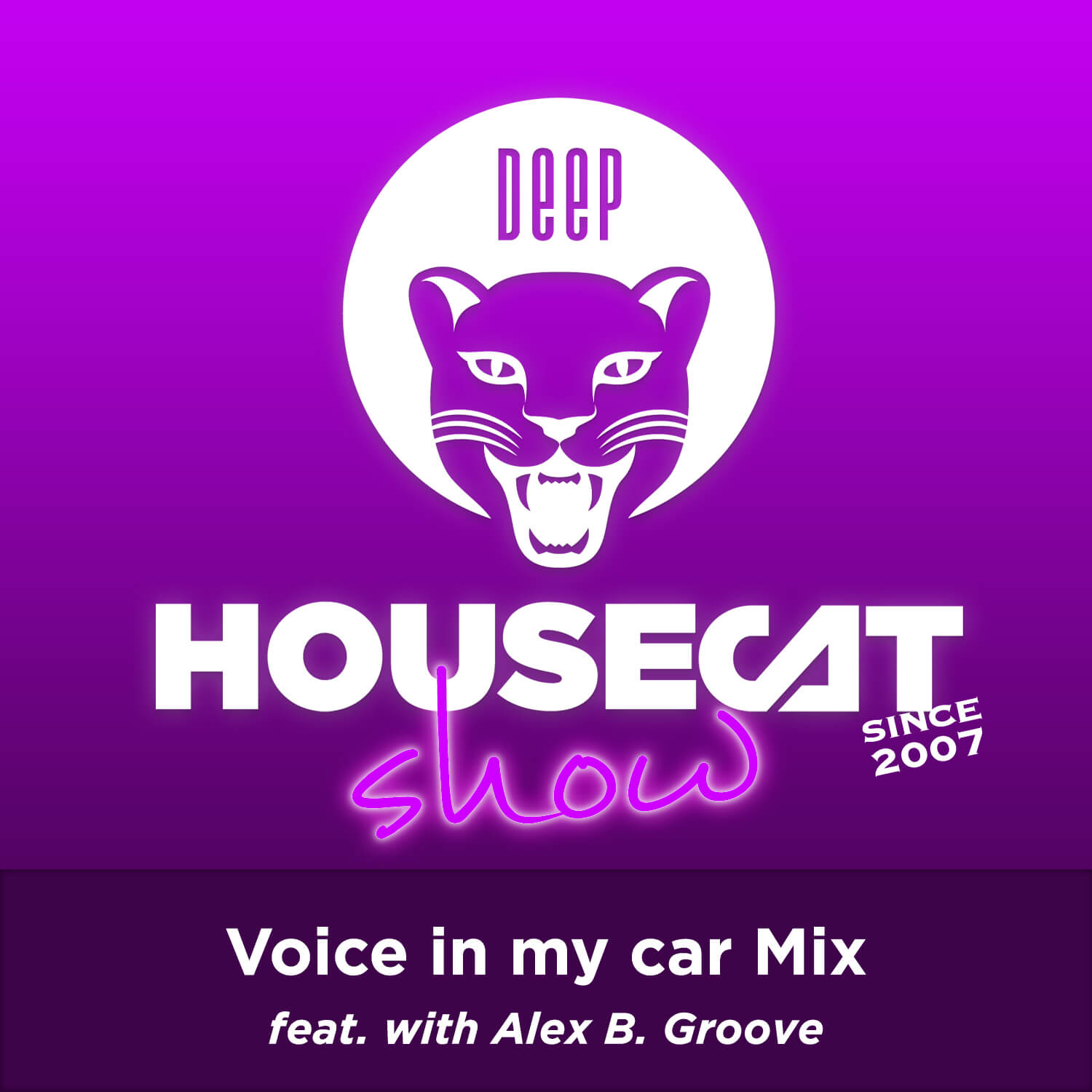 Deep House Cat Show - Voice in my car Mix - with Alex B. Groove
